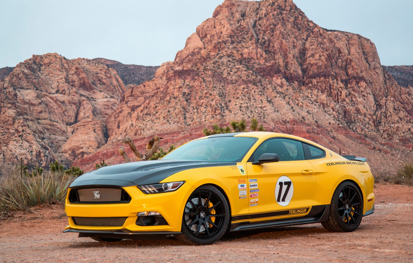 Photo wallpaper Mustang, Ford, Shelby, 2016, Terlingua