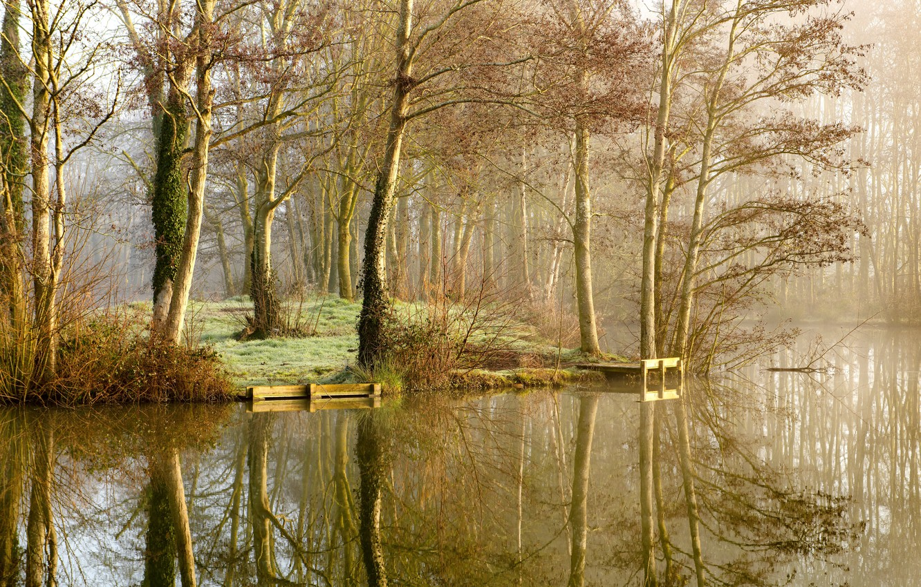 Photo wallpaper autumn, trees, nature, fog, lake, Park, reflection