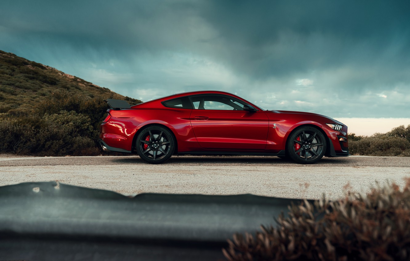 Photo wallpaper Mustang, Ford, Shelby, GT500, profile, bloody, 2019