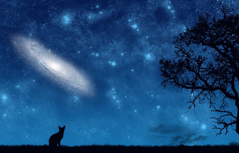 Photo wallpaper cat, space, night, tree, vector, art, galaxy, eternity
