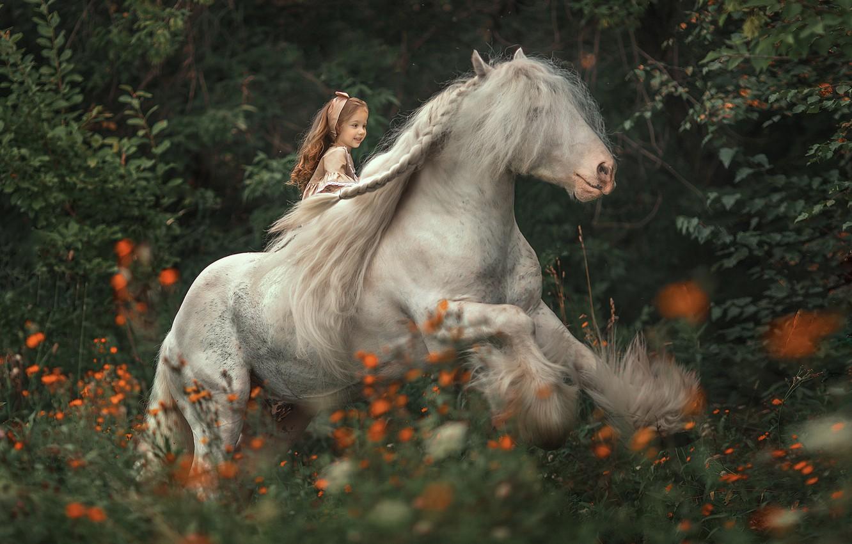 Photo wallpaper forest, flowers, horse, rider, mane, girl, rider