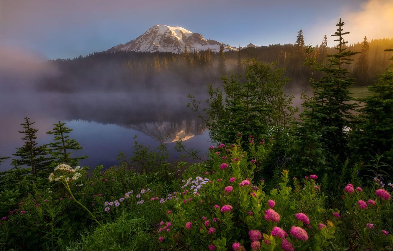 Photo wallpaper forest, flowers, mountains, fog, lake, Doug Shearer