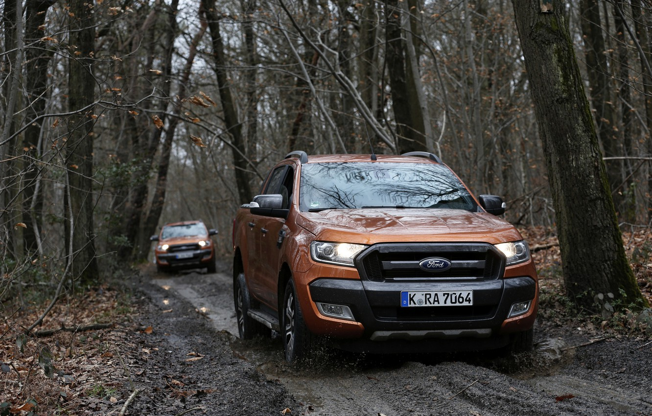 Photo wallpaper road, forest, trees, Ford, dirt, pickup, dampness, Ranger, Wildtrak