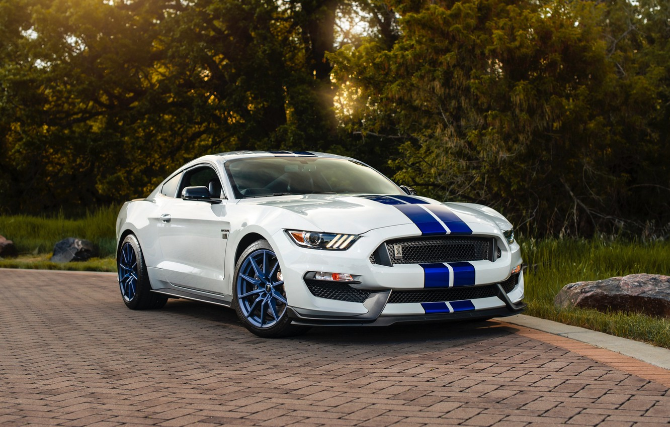 Photo wallpaper road, machine, white, lights, mustang, sports car, ford, side view, wheel, Shelby GT350, Ford mustang …