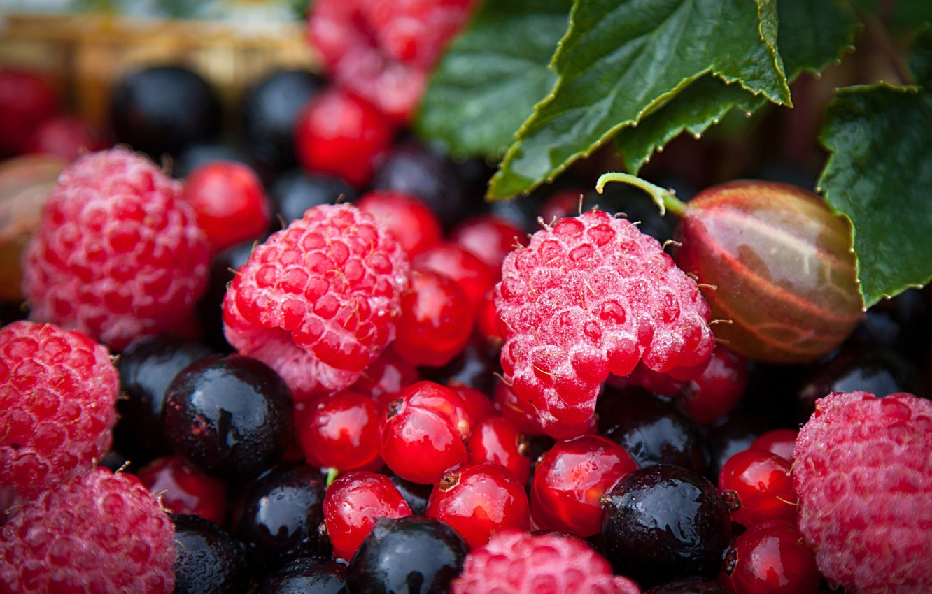 Photo wallpaper summer, berries, raspberry, strawberries, gooseberry, black currant