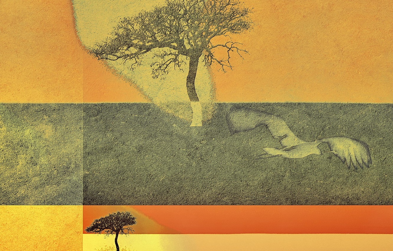 Photo wallpaper tree, color, form