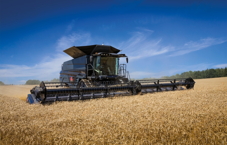Photo wallpaper Field, Wheat, 2018, Massey Ferguson, Harvester, Massey Ferguson Ideal 9T