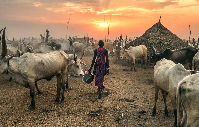 Photo wallpaper Terekeka, South Sudan, Against the Sun