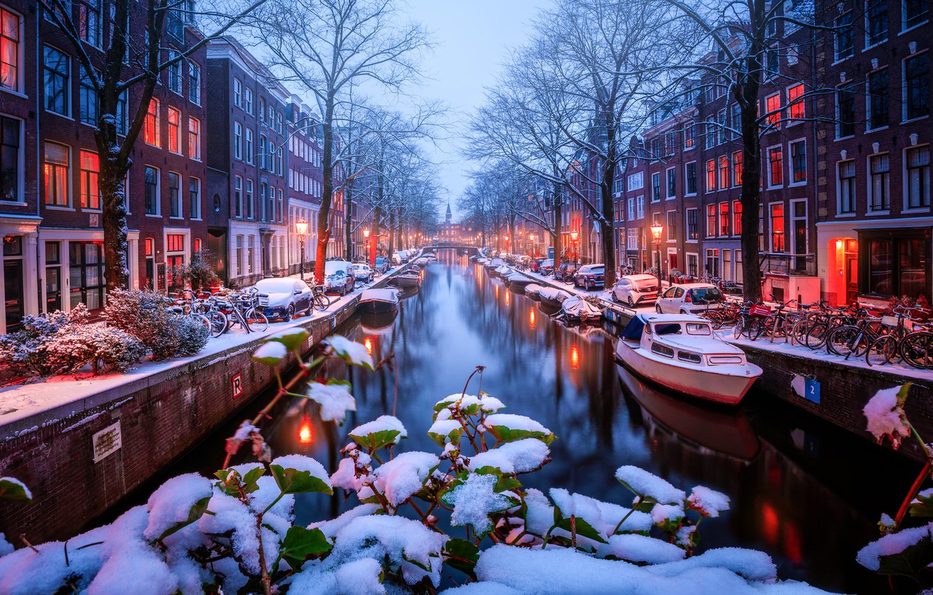 Photo wallpaper leaves, snow, trees, branches, boats, Amsterdam, channel, Netherlands, boats, promenade, Amsterdam, bikes, Netherlands