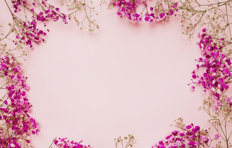 Wallpaper Flowers Background Pink Frame Pink Flowers Frame