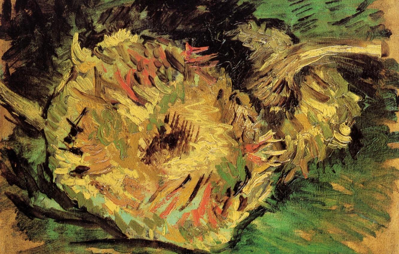Wallpaper sunflower, Vincent van Gogh, Two Cut Sunflowers ...