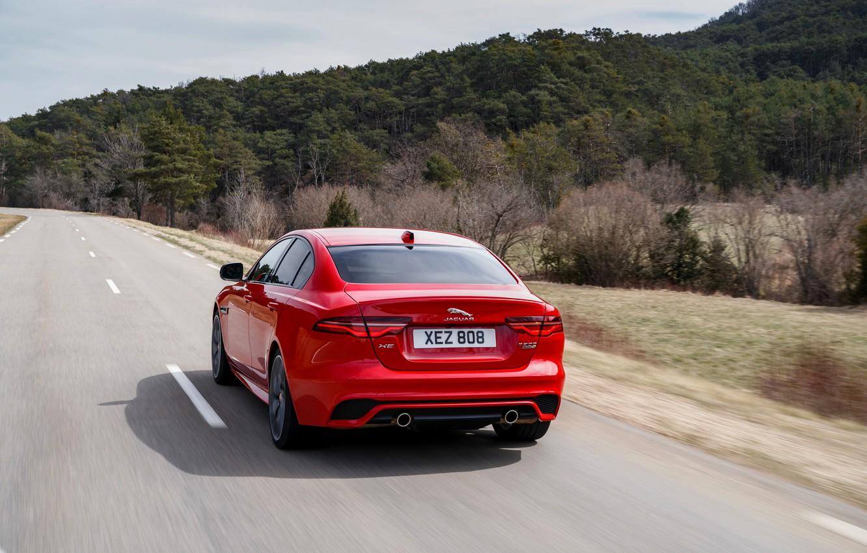 Photo wallpaper road, forest, red, Jaguar, rear view, 2020, Jaguar XE