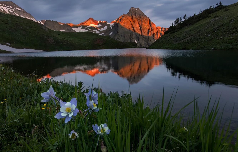 Photo wallpaper grass, landscape, sunset, flowers, mountains, nature, lake, Colorado, USA, meadows, Aquilegia