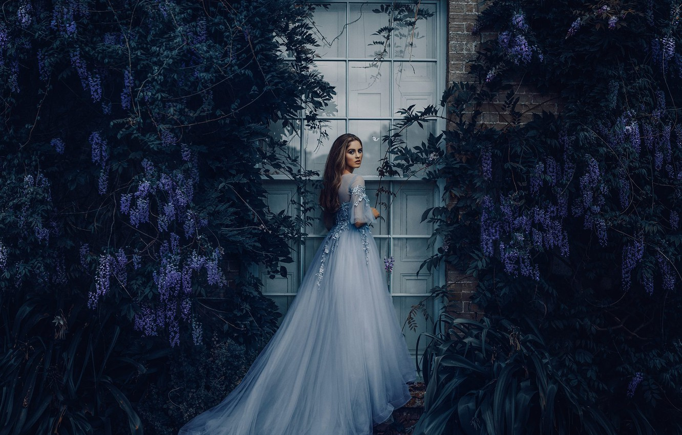 Photo wallpaper girl, mood, dress, window, Wisteria, Wisteria, Bird Man, Grace Bowker