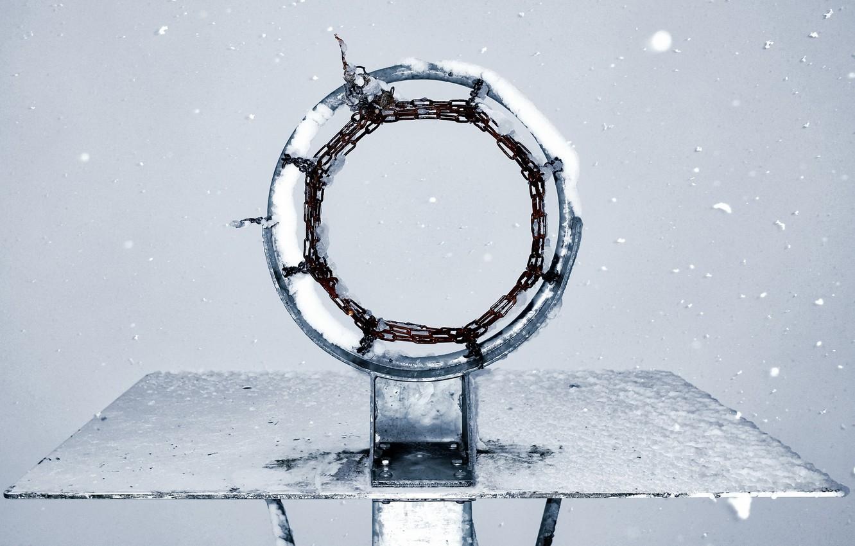 Photo wallpaper ring, shield, basketball