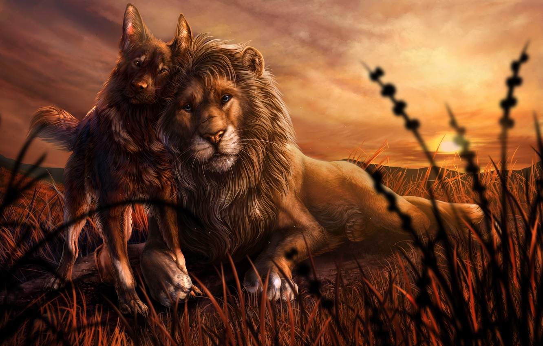 Photo wallpaper animals, grass, sunset, dog, Leo, friendship