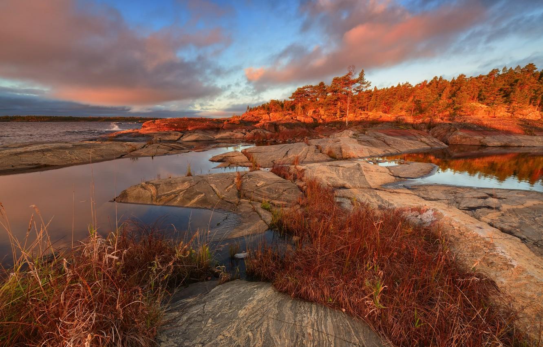 Photo wallpaper autumn, forest, grass, landscape, nature, lake, stones, Lake Ladoga, Karelia, Ladoga, Maxim Evdokimov, Skerries