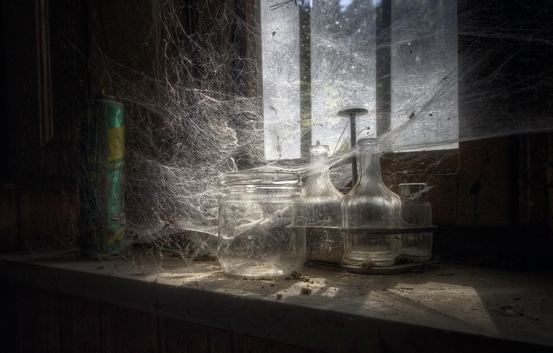 Photo wallpaper web, window, banks, naturalism