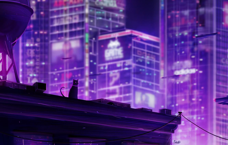 Photo wallpaper cat, night, the city, by RicoDZ