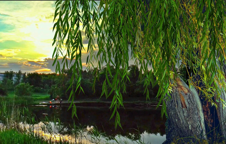 Photo wallpaper summer, river, the fire, dawn
