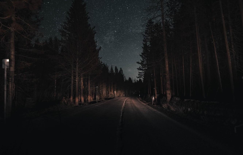 Photo wallpaper road, forest, the sky, light, trees, night, stars, pine, headlights