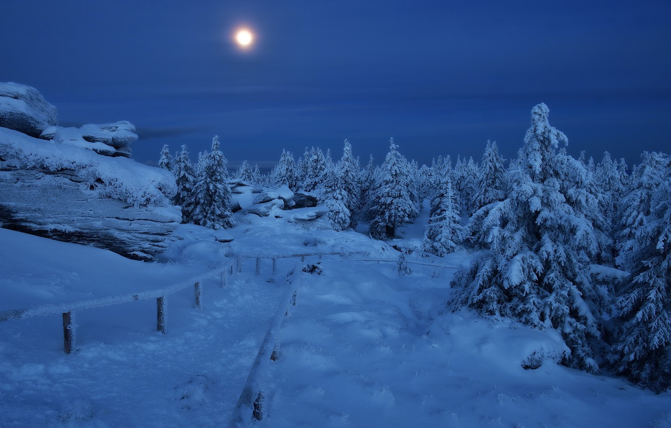 Photo wallpaper winter, snow, trees, landscape, mountains, night, nature, stones, the moon, ate, Czech Republic, track