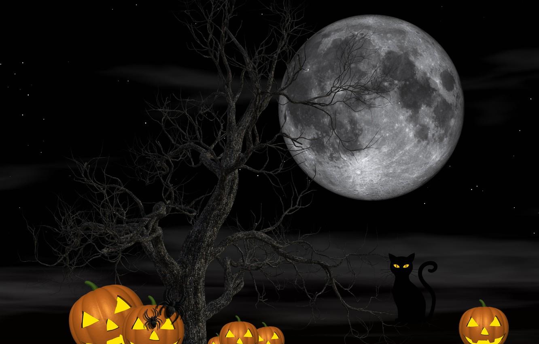 Photo wallpaper cat, night, tree, the moon, spiders, pumpkin, Halloween, 31 Oct