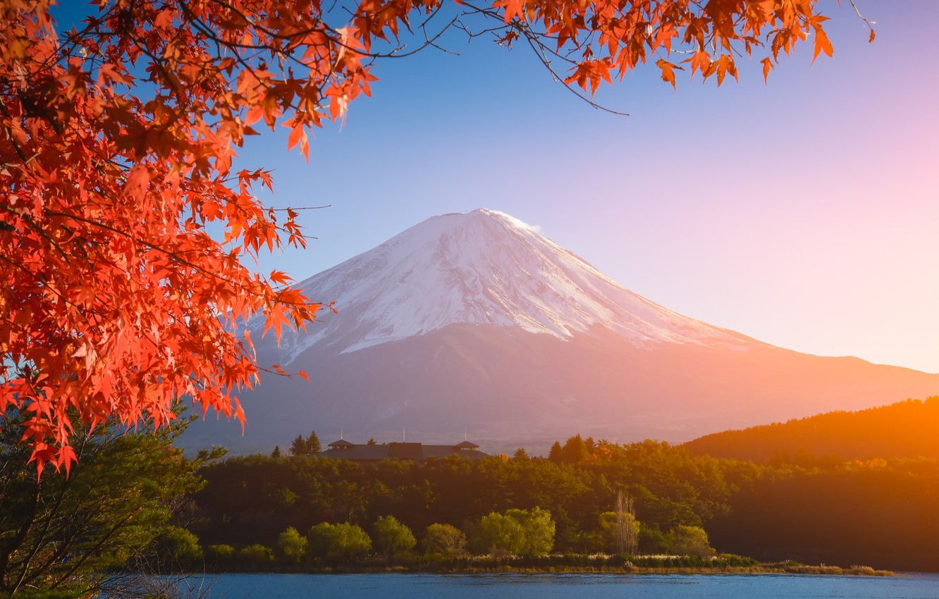 Wallpaper Autumn The Sky Leaves Colorful Japan Japan