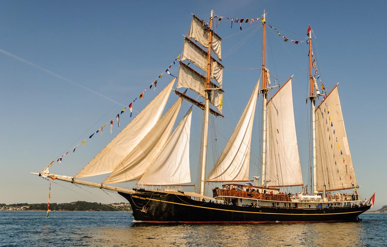 Photo wallpaper sea, ship, sailboat, sails, schooner, Golden Lion