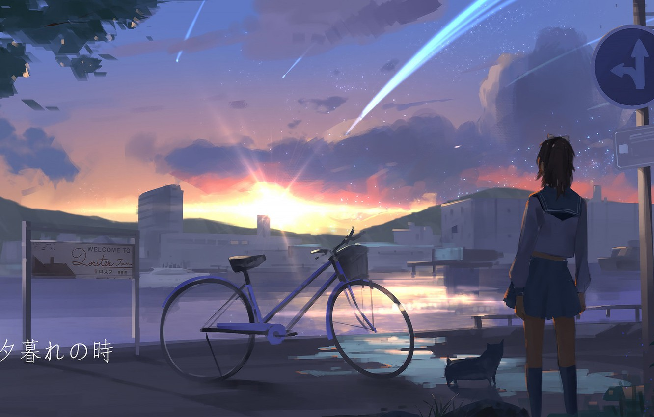 Photo wallpaper road, bike, puppy, schoolgirl, sunset, road sign, sailor, from the back, shooting stars, by Sun …