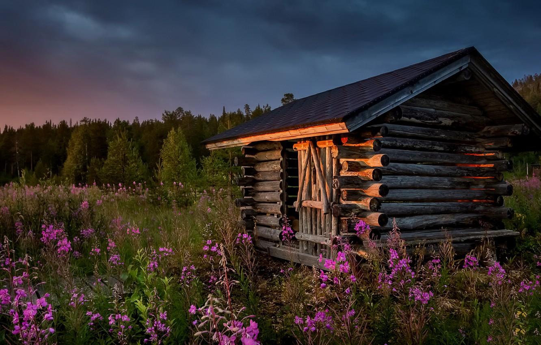 Photo wallpaper summer, sunset, flowers, house