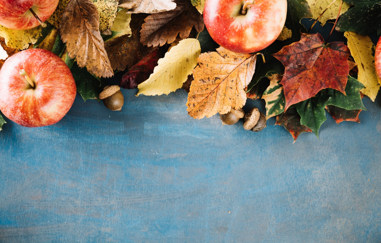 Photo wallpaper autumn, leaves, background, apples, colorful, wood, background, autumn, leaves, autumn, apples, maple