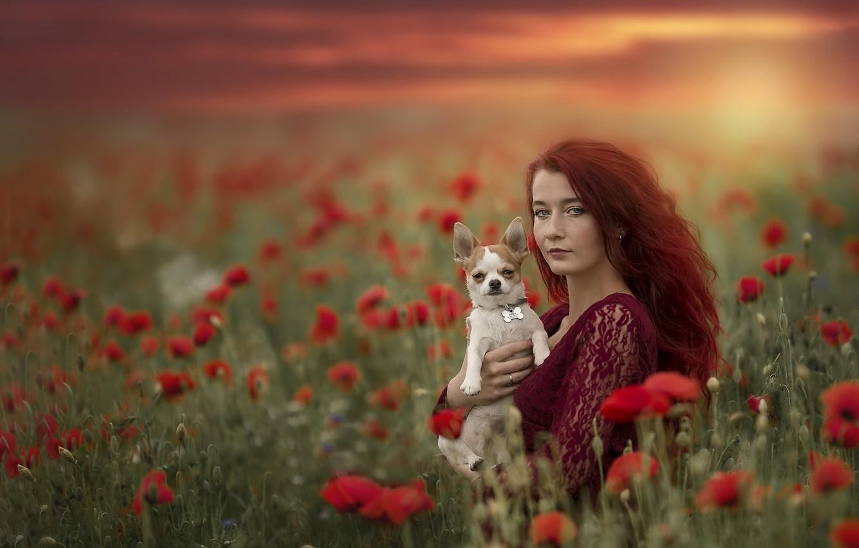 Photo wallpaper summer, girl, sunset, Maki, dog