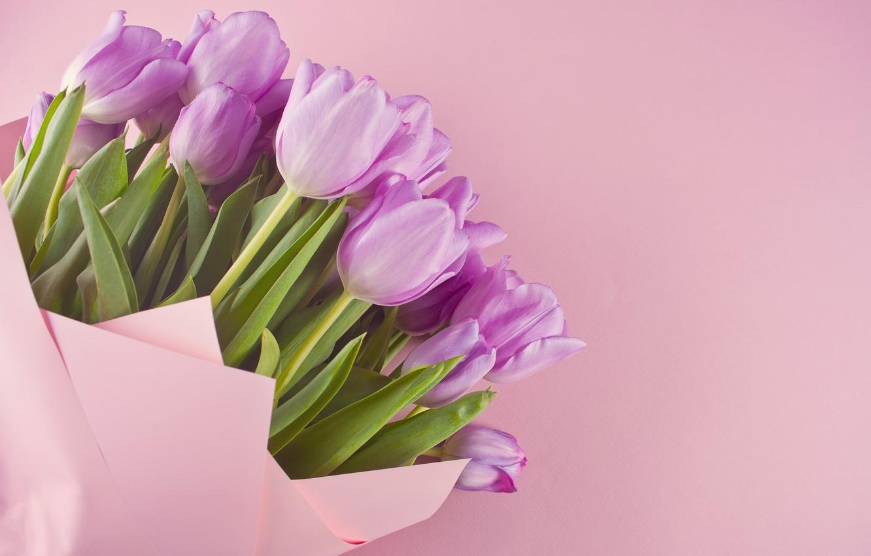 Photo wallpaper bouquet, tulips, pink