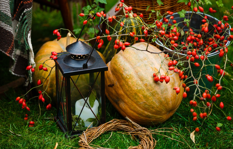 Photo wallpaper autumn, leaves, berries, harvest, pumpkin, autumn, leaves, pumpkin, harvest