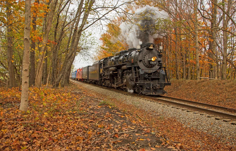 Photo wallpaper autumn, forest, train
