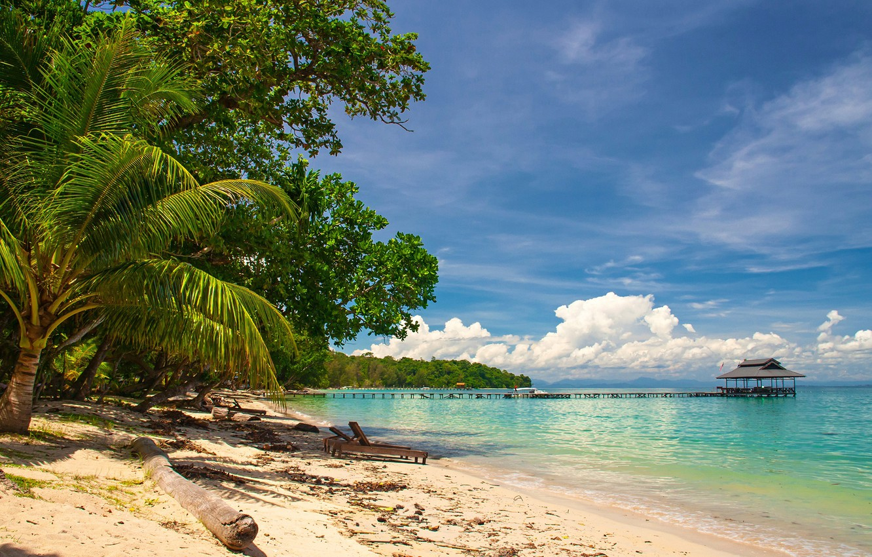 Photo wallpaper sand, sea, greens, beach, the sky, the sun, clouds, trees, tropics, palm trees, coast, horizon, …