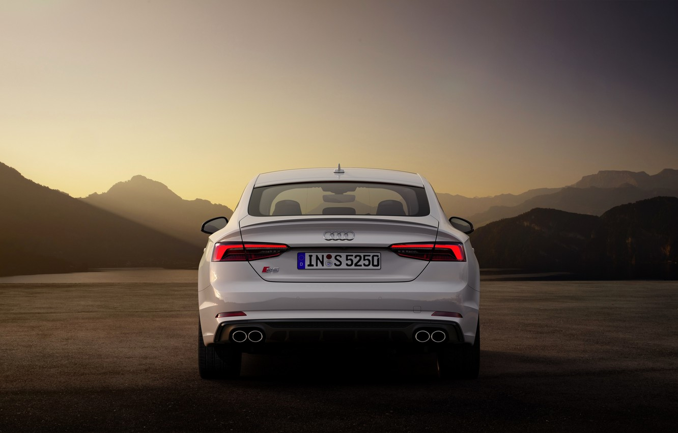 Wallpaper Audi, Audi A5, feed, 2019, S5 Sportback images for