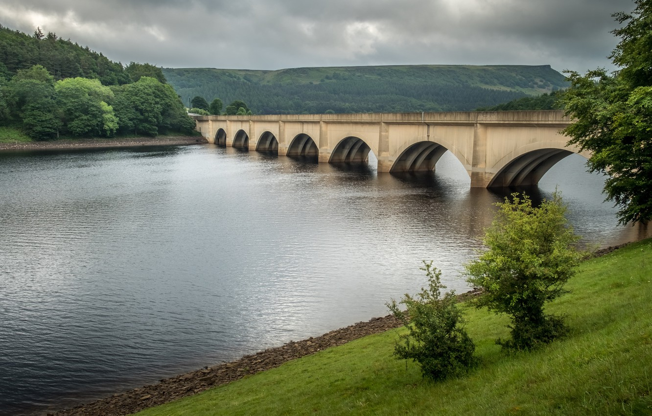 Photo wallpaper greens, forest, summer, trees, bridge, river, shore, slope, arch, pond, stone, aqueduct, arched