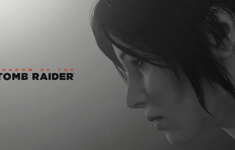 Photo wallpaper lara croft, long hair, grey background, shadow of the tomb raider
