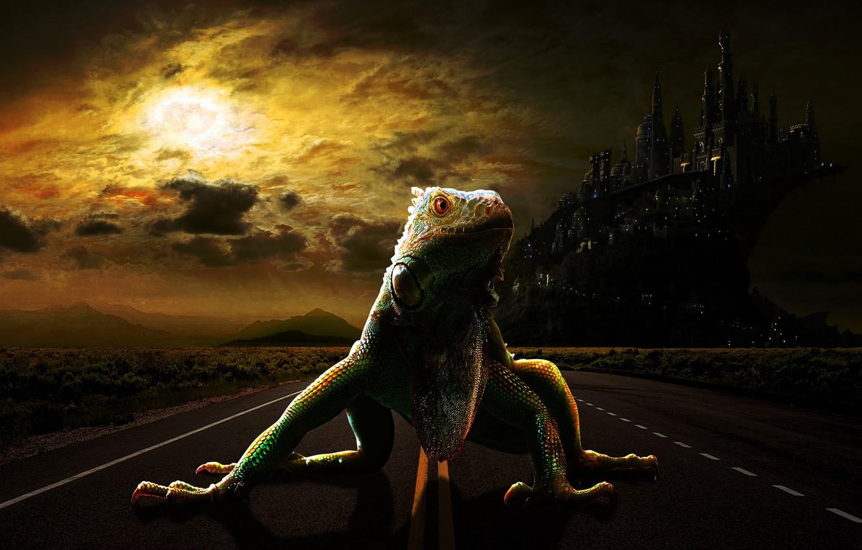Photo wallpaper road, the city, lizard, lizard, fantasy