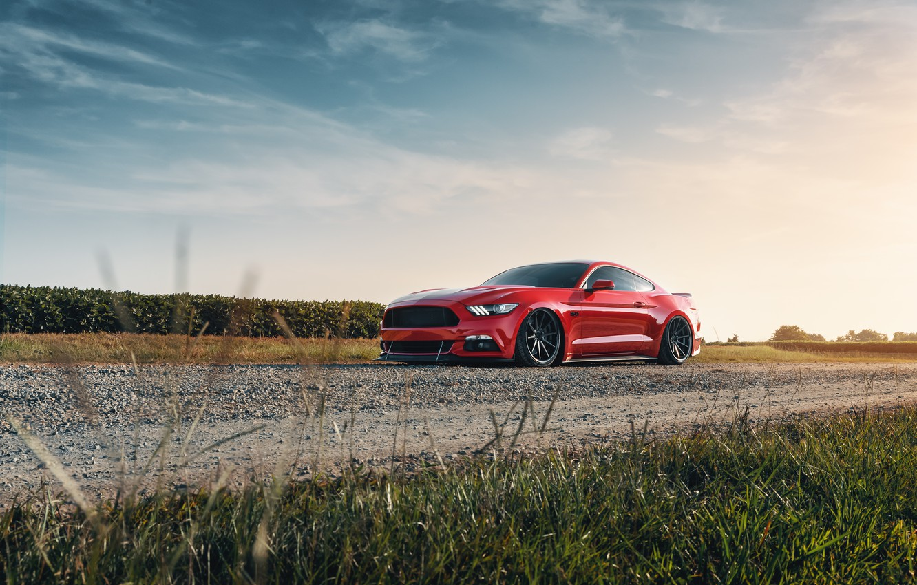 Photo wallpaper Mustang, Ford, 2018, Mustang GT, by Jimmy Zhang
