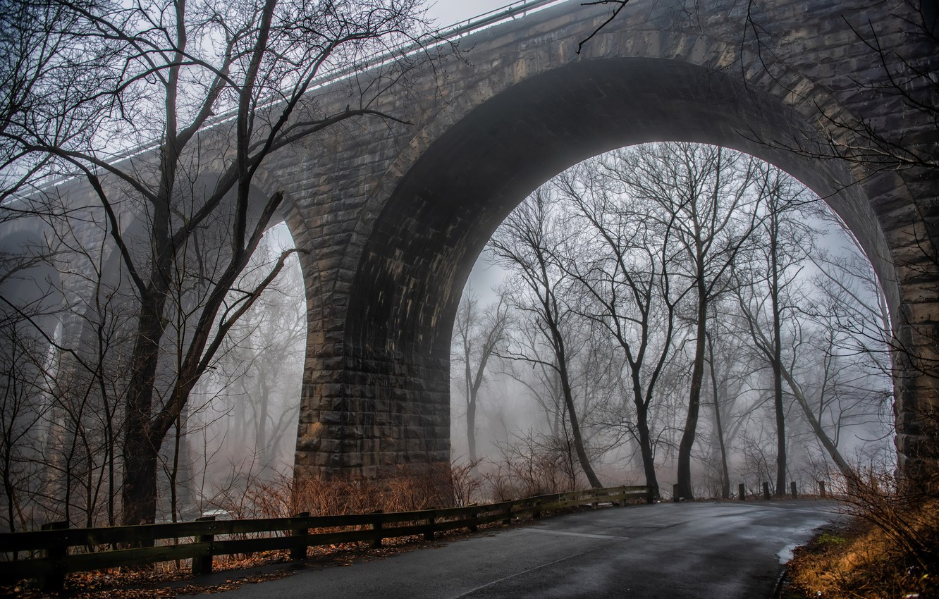 Photo wallpaper road, bridge, fog