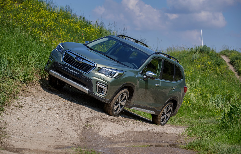 Photo wallpaper grass, Subaru, dirt, crossover, Forester, 2019
