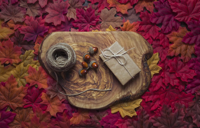Photo wallpaper autumn, leaves, background, tree, colorful, maple, wood, acorns, background, autumn, leaves, autumn, maple