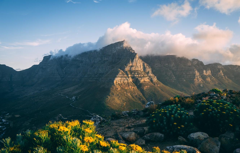 Photo wallpaper clouds, landscape, flowers, mountains, nature, rocks, vegetation, flowering