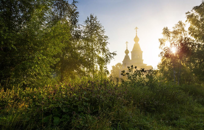 Photo wallpaper summer, trees, nature, morning, Church, grass