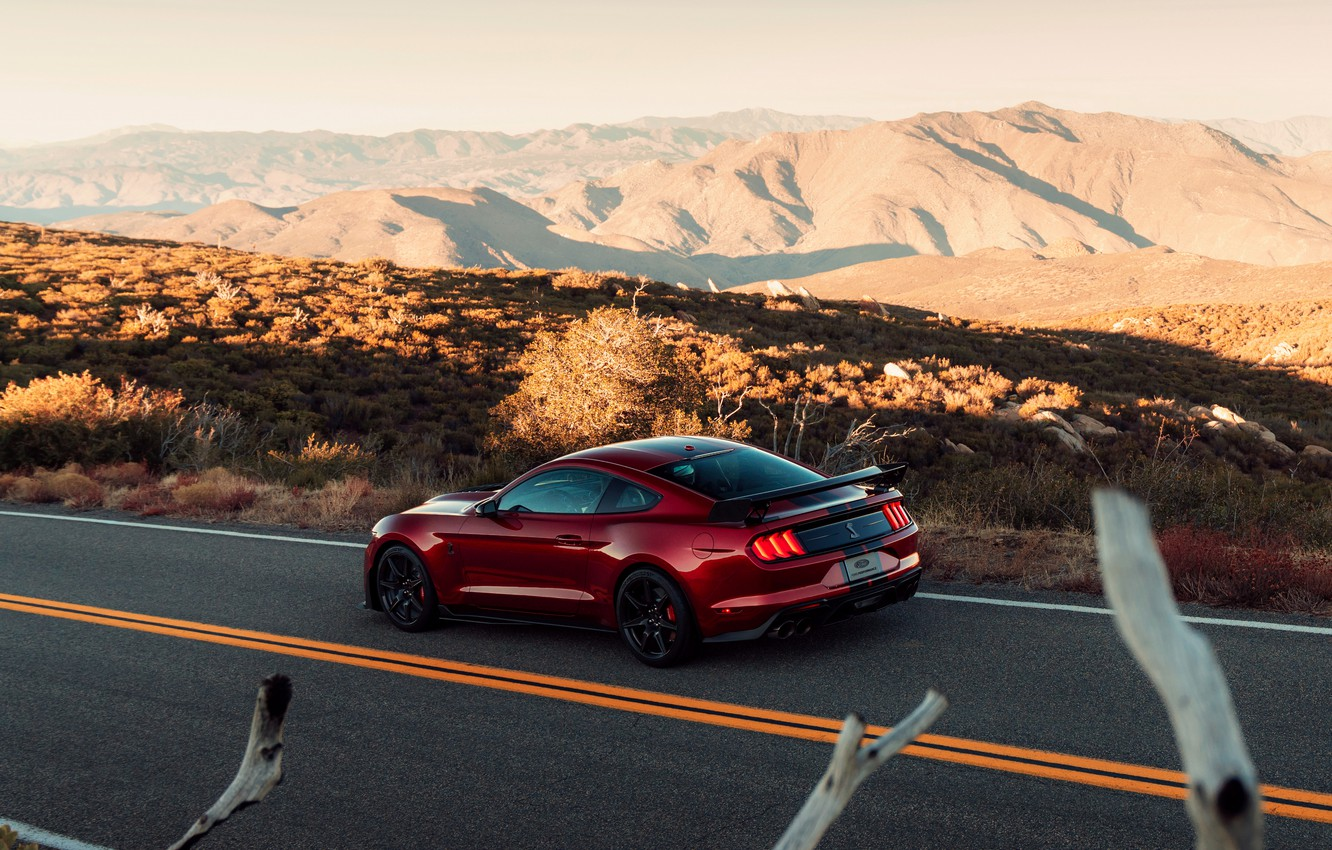 Photo wallpaper road, Mustang, Ford, Shelby, GT500, bloody, 2019