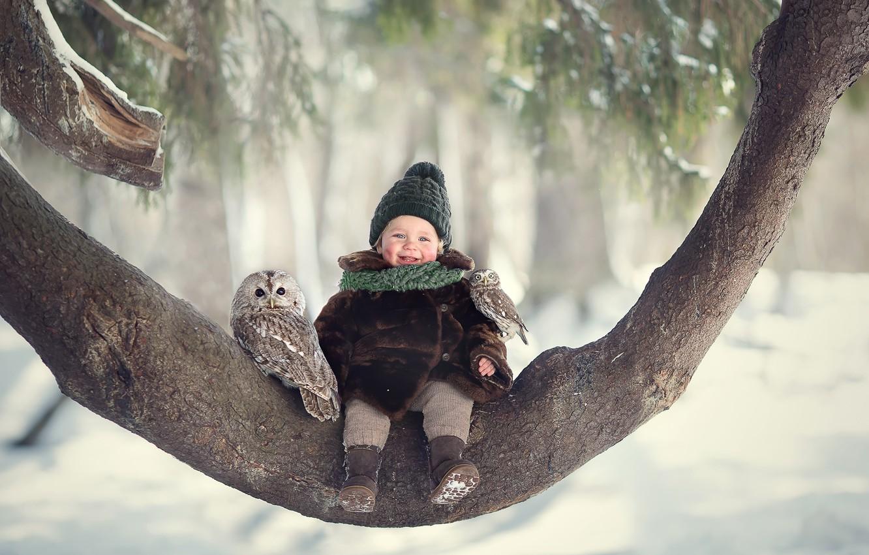 Photo wallpaper winter, joy, birds, tree, owl, laughter, girl, baby, chick, child, owlet, Marianne Smolin