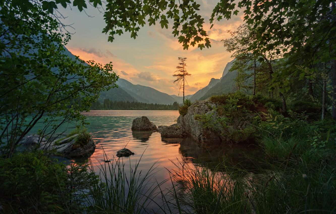Photo wallpaper grass, trees, landscape, sunset, mountains, branches, nature, lake, stones